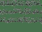 Quran Surah An-Nur [24:43]
