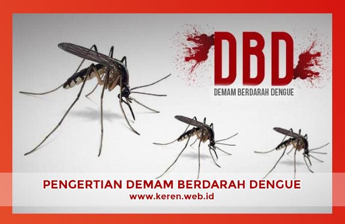 Pengertian dan Gejala Demam Berdarah Dengue
