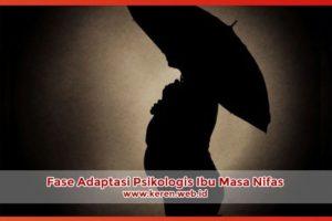 Fase Adaptasi Psikologis Ibu Masa Nifas