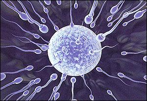 Produksi Sperma Berkurang