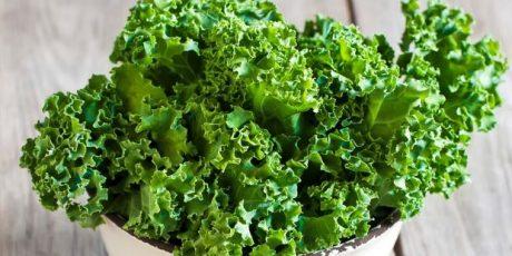 Manfaat sayur Kale untuk kesehatan