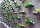 Mengolah Sampah Plastik bekas minuman menjadi karya yang indah