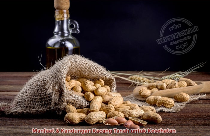 Manfaat & Kandungan Kacang Tanah untuk Kesehatan