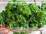 Manfaat Sawi dan Juice Kale bagi kesehatan