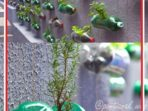 Taman Botol di Dinding (Garden Wall)